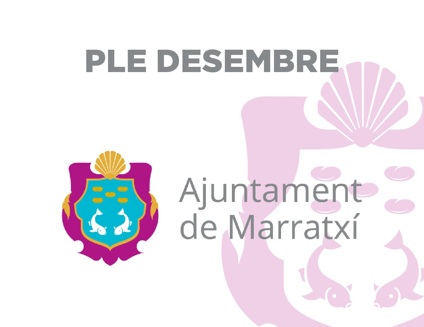 PLE-DESEMBRE-01-01