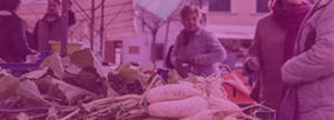 puesto de venta productos agrícolas