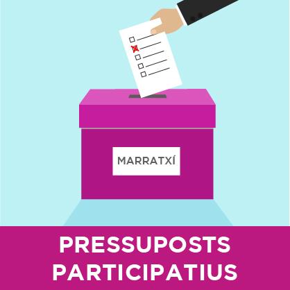 caja de votación