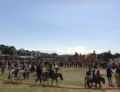 Obert el període per a la sol·licitud d'instal·lació de parades a la Fira de Tardor